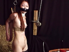 Japanese honey strapped and